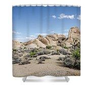 Joshua Tree No.1 Shower Curtain