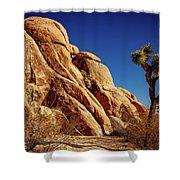 Joshua Tree Np 3 Shower Curtain