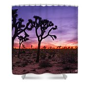 Joshua Tree Pastel Colors Shower Curtain