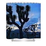 Joshua Tree Sunset Skies Shower Curtain