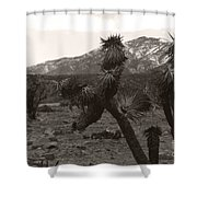 Joshua With Snow Capped Mountain Shower Curtain