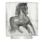 Journey Into Freedom   Shower Curtain