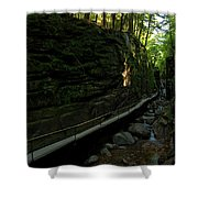 Journey Through The Gorge Shower Curtain