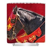 Jouster Red Shower Curtain