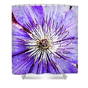 Joy And Inspiration Shower Curtain