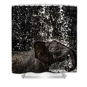 Joy Of Life Shower Curtain