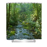 Joyce Kilmer Memorial Forest Shower Curtain