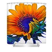 Joyful Shower Curtain