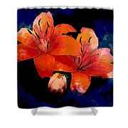 Joyful Lilies Shower Curtain
