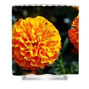 Joyful Orange Floral Lace Shower Curtain