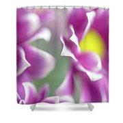 Joyful Sisters. Gentle Floral Macro Shower Curtain