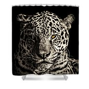 Judge, Jury And Executioner Shower Curtain