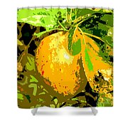 Juicy Apple On A Tree Shower Curtain