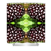 Juicy Fruity Shower Curtain