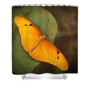 Julia Dryas Butterfly-2 Shower Curtain