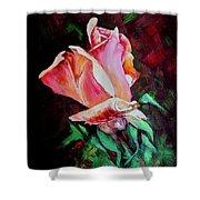 Julia's Rose Shower Curtain