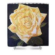 Julie's Yellow Rose Shower Curtain