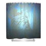 Julius  Shower Curtain