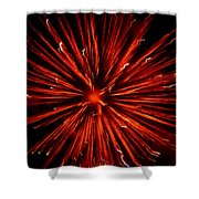 July 4 Fireworks Shower Curtain