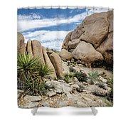 Jumbo Rocks Shower Curtain