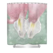 Jumeaux Shower Curtain