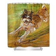 Jumping Dog Schlick 1908 Shower Curtain