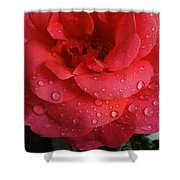 June  Rose  Shower Curtain