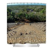Jungle And Ruins View Shower Curtain