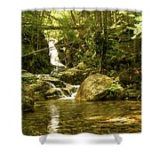 Jungle Appeal Shower Curtain