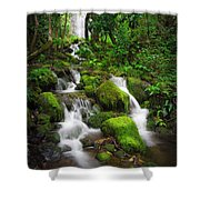Jungle Falls Shower Curtain