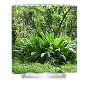 Jungle Fronds Shower Curtain