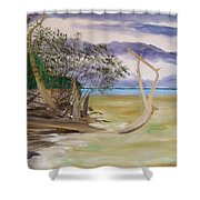 Jungle Gym Mangrove Tree Shower Curtain