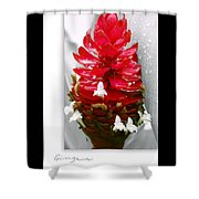 Jungle King Ginger Shower Curtain