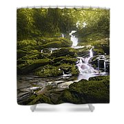 Jungle Riverflow Scene Shower Curtain