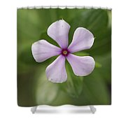 Junglee Flower Shower Curtain