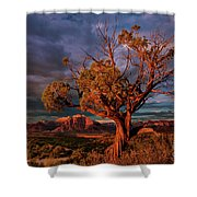 Juniper And Storm Back Of Zion National Park Utah Shower Curtain