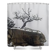 Juniper In Snow-signed-#2572 Shower Curtain