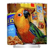 Junk Food Junkie Caught Shower Curtain