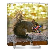 Junk Food Squirrel Shower Curtain