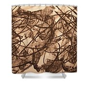 Jurisdiction Indine Shower Curtain