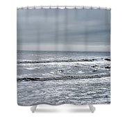 Just A Grey Day Shower Curtain