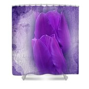 Just A Lilac Dream -2- Shower Curtain by Issabild -