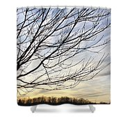 Just A Tree And Clouds Shower Curtain