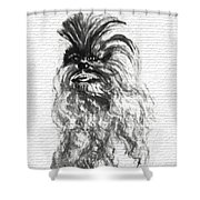Just Another Urban Legend Shower Curtain