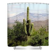 Just Arizona Shower Curtain