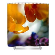 Just As It Is... Shower Curtain