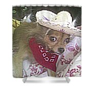 Just Because She Is A Chihuahua Shower Curtain