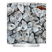 Just For The Shell Of It Shower Curtain