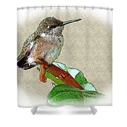 Just Hangin' Out Shower Curtain