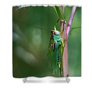 Just Hanging Out Shower Curtain